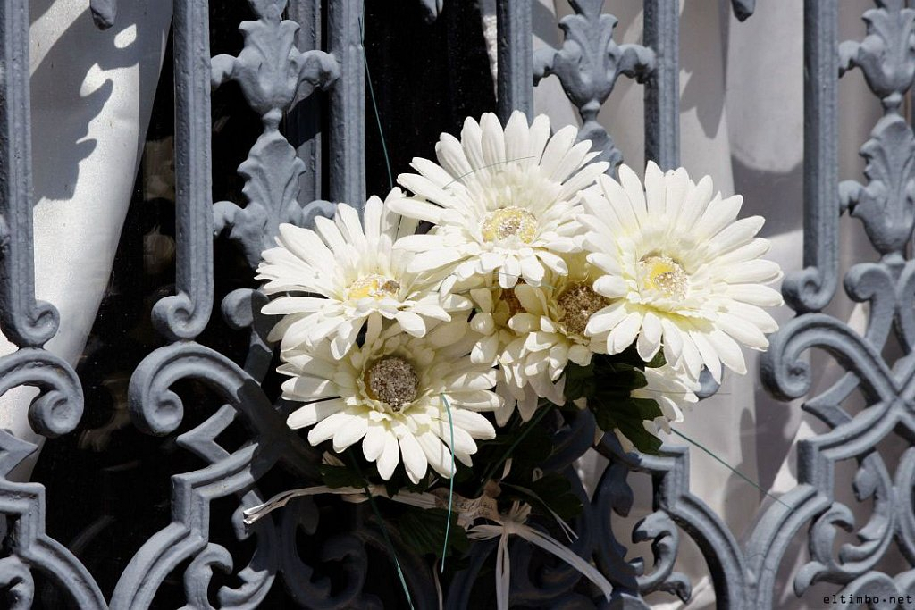Cemitério dos Prazeres #1