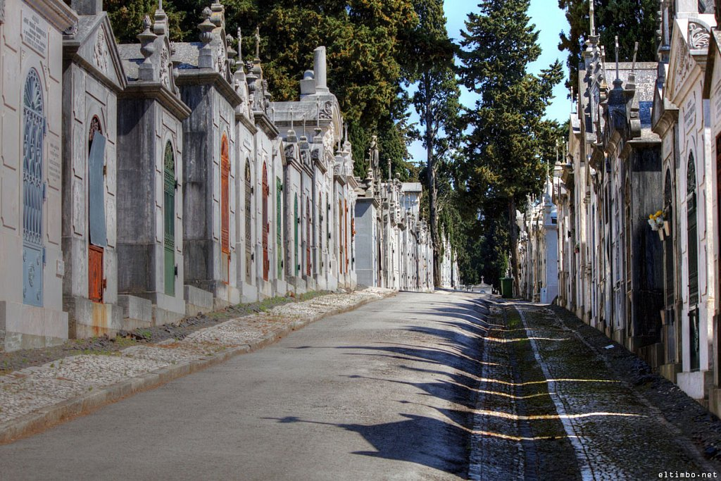 Cemitério dos Prazeres #4