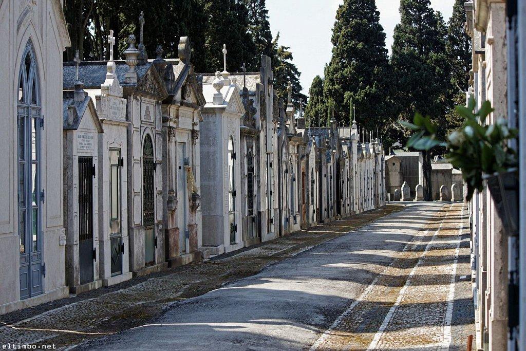 Cemitério dos Prazeres #8